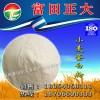 长期供应小麦蛋白粉