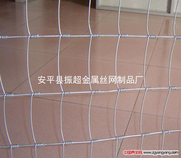 圈羊围栏,围网-www.zhenchaowy.com