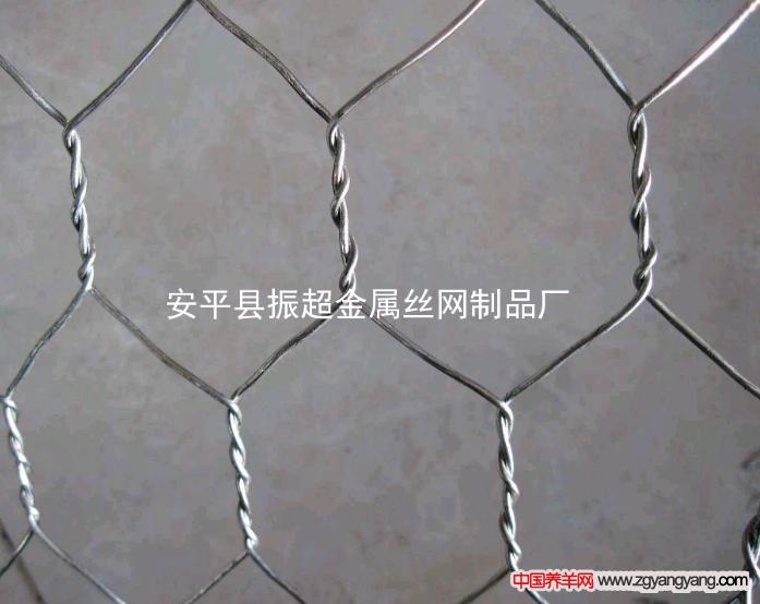 圈羊围网围栏-www.zhenchaowy.com