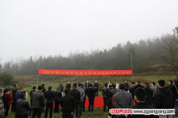 30组黔北麻羊养殖项目